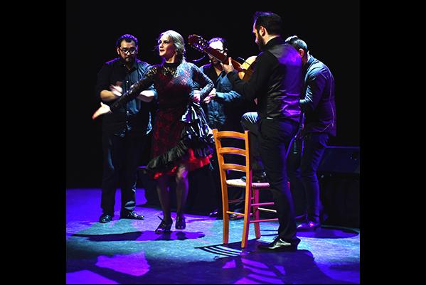 flamenco--cappozzo