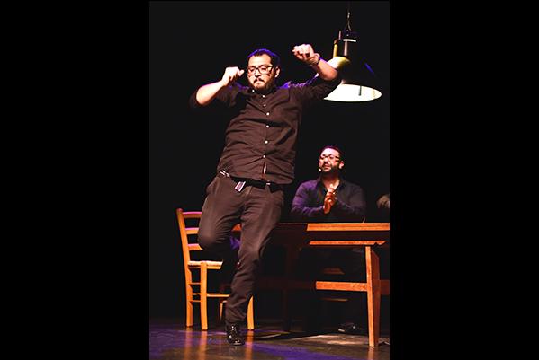 flamenco--cappozzo-2
