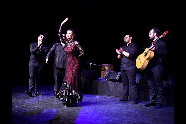 flamenco--cappozzo-3