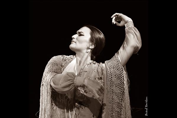 flamenco--cappozzo-4