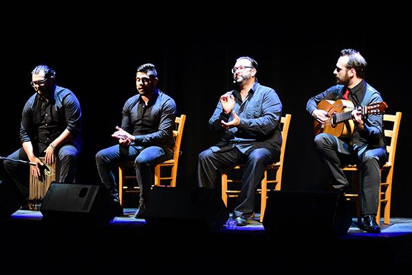 flamenco--cappozzo-8