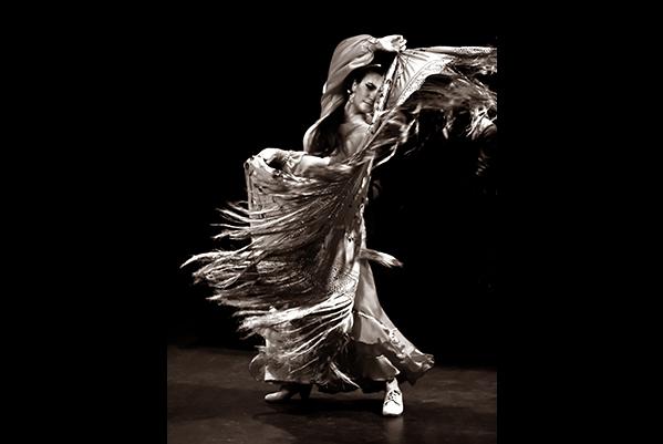 flamenco--cappozzo-9